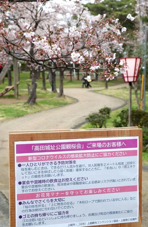 観桜会の会場のあちこちに設けられた、宴会自粛などを呼び掛ける看板=1日、上越市