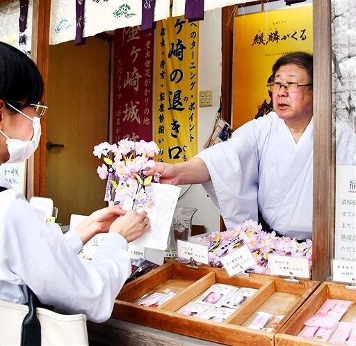 「花換まつり」の開幕に合わせて始まった桜の小枝販売=4月1日、福井県敦賀市金ケ崎町の金崎宮