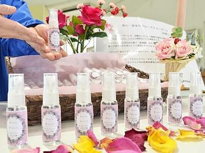 バラの香りで抗菌 スプレー無料配布 福井県坂井市ゆりの里公園