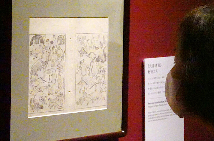 企画展に並んだ「北斎漫画」。さまざまな動物を精緻に描いている