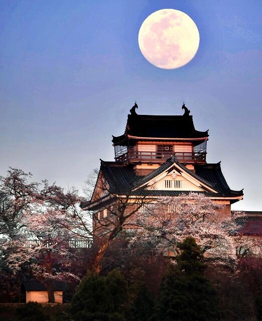 福井県大野市犬山から撮影