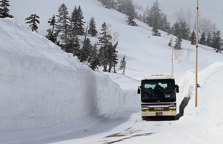 立山黒部アルペンルートが部分開通し、雪の壁の間を進む立山高原バスの始発便=立山・弥陀ケ原