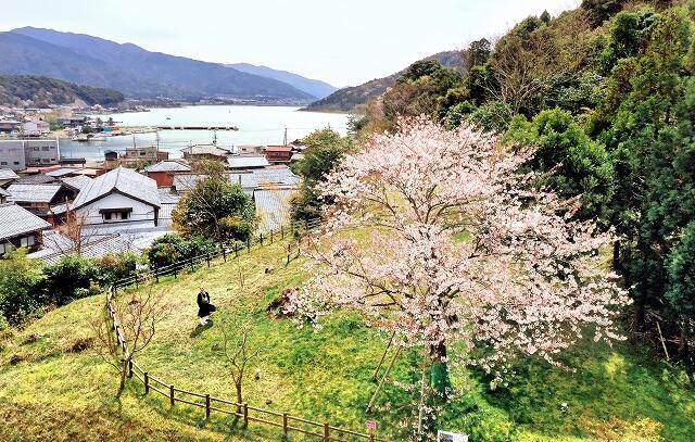 福井県美浜町早瀬の瑞林寺