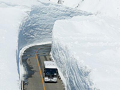 立山黒部アルペンルート全線開通 雪の大谷ウオークは中止