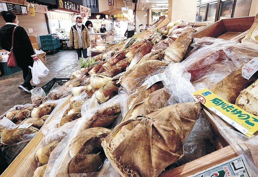 店頭にずらりと並んだ石川県産タケノコ=金沢市の近江町市場