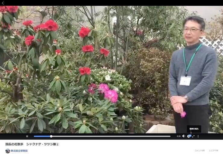 花の映像と倉重祐二園長の解説が楽しめる県立植物園の動画「園長の花散歩」