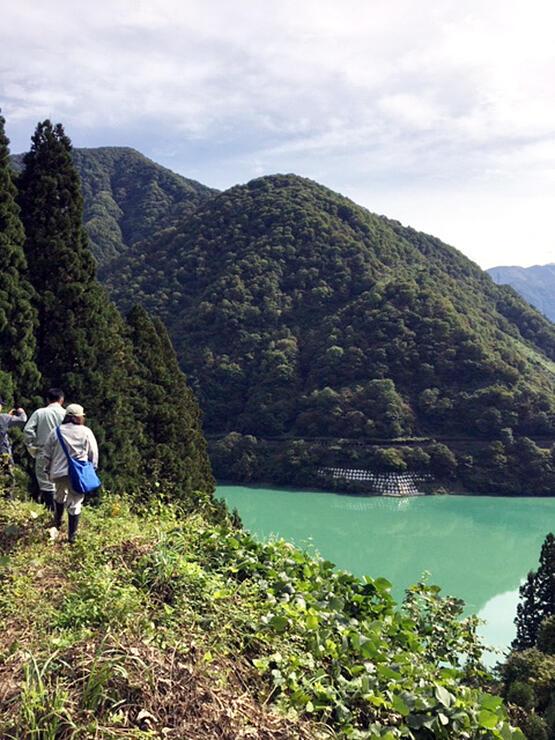 ダム湖を望む遊歩道を視察する代表者会議メンバーら=昨年10月、黒部市宇奈月温泉