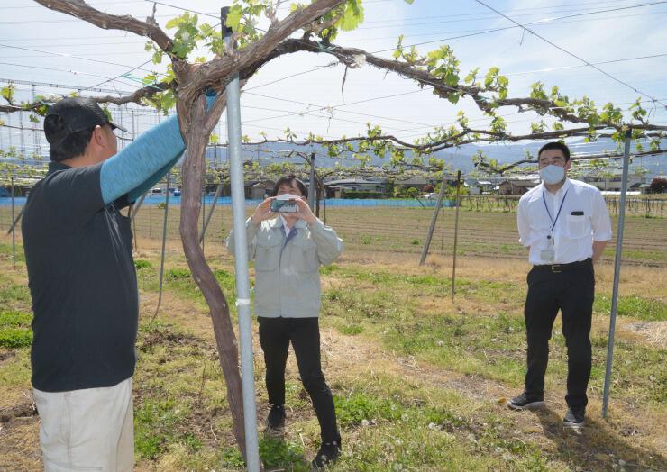 塩尻市内のワイナリーの様子や生産者の思いを収録する市職員