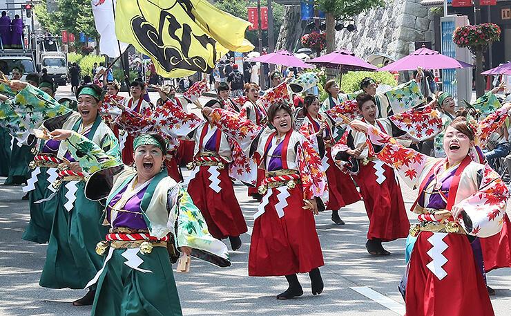 昨年の富山まつりで繰り広げられたよさこいパレード=2019年8月、城址大通り