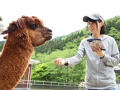 「オンライン動物園」楽しんで 胎内・樽ケ橋遊園