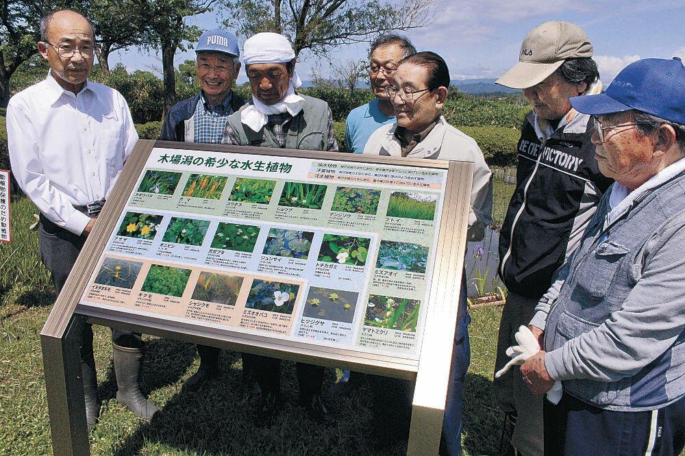 水生植物を紹介する看板=小松市の木場潟公園西園地