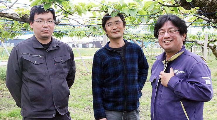 呉羽梨生産に取り組む(左から)青山さん、安川さん、関さん=安川梨園