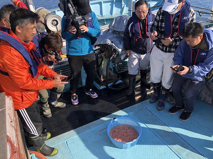 水揚げされたばかりのシロエビを撮影する参加者=射水市の新湊沖
