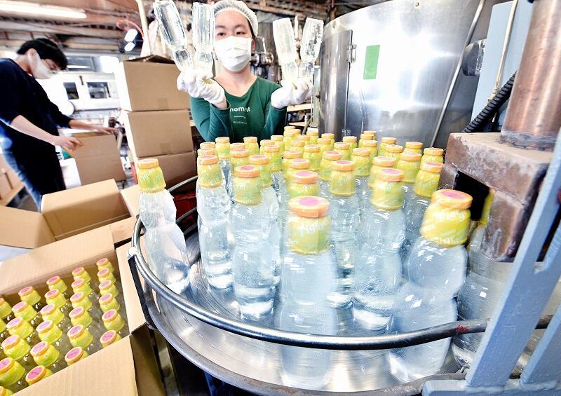 従業員が検品した後、次々と箱詰めされるラムネ=6月3日、福井県福井市上野本町の北陸ローヤルボトリング協業組合