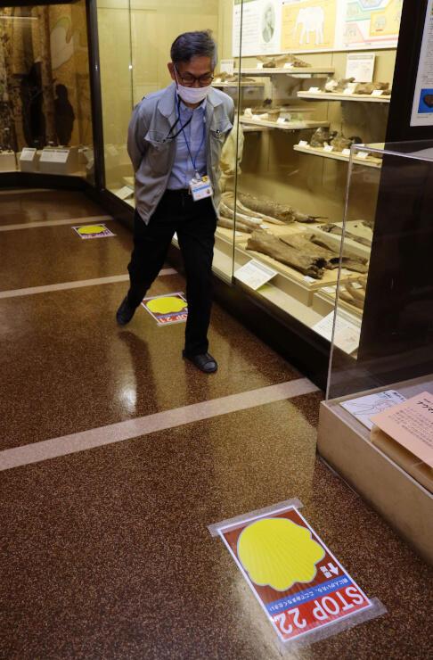 ナウマンゾウの足の形や歩幅を再現したシートの上を大股で歩く近藤館長