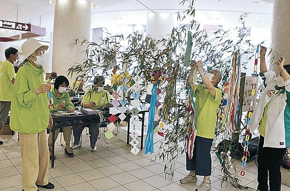 竹に飾りを取り付けるメンバー=金沢駅もてなしドーム地下広場