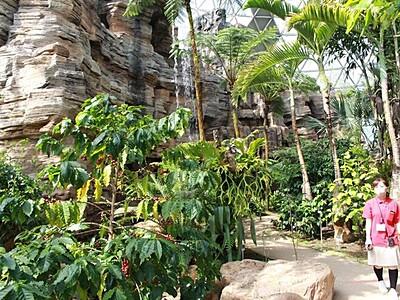 熱帯ドーム リニューアル 新潟市秋葉区・県立植物園