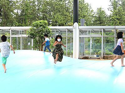 新設の遊具に歓声 氷見市海浜植物園リニューアル
