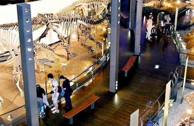 距離を取って展示物を見る家族連れら=6月15日、福井県勝山市の県立恐竜博物館