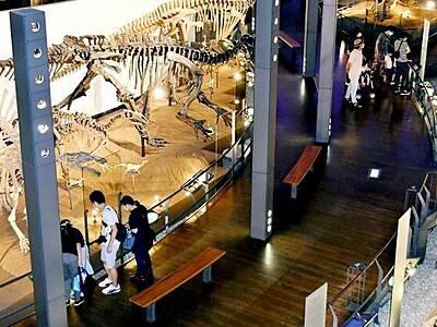 恐竜静かに目覚め 福井県立博物館、3カ月半ぶり再開