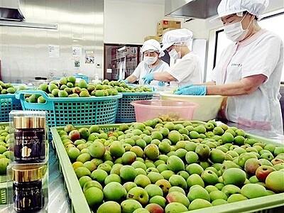 福井県おおい町特産の梅肉エキスで、今夏も元気に