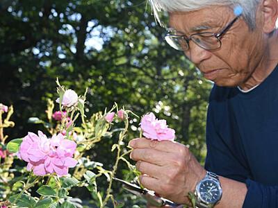 ガーデナー、たゆまぬ熱意 茅野の英国式庭園30周年