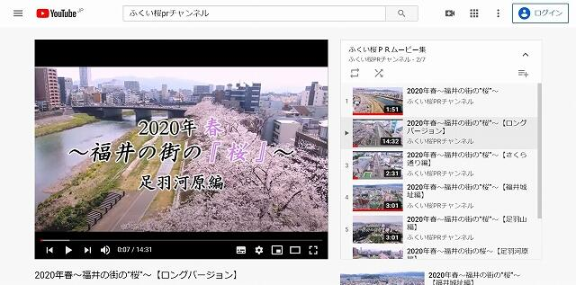 今春の福井県福井市内の桜の風景を捉えたPR動画