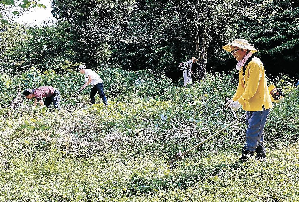 草刈りに励む参加者=加賀市内