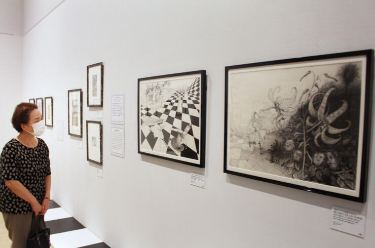 世界中の画家が描いた挿絵などが並ぶ「不思議の国のアリス展」=新潟市秋葉区