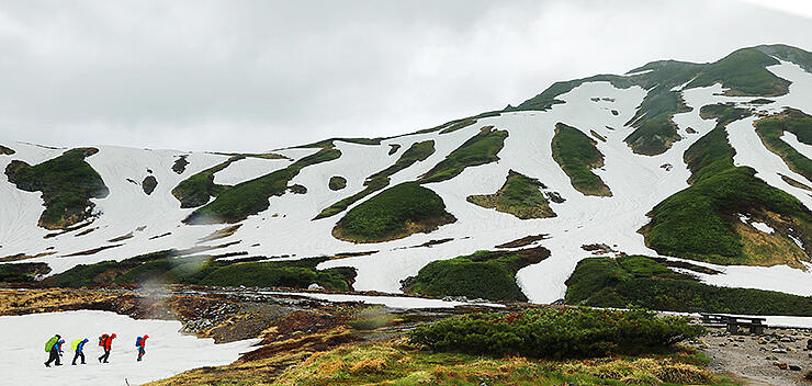 夏山開きを控え、多くの雪が残る山肌。営業準備に向かう山小屋スタッフが登山道を行く=立山・雷鳥沢
