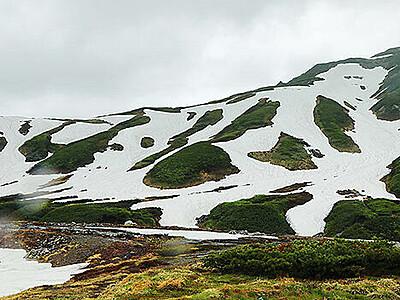 夏山のにぎわい戻れ 立山で1日山開き
