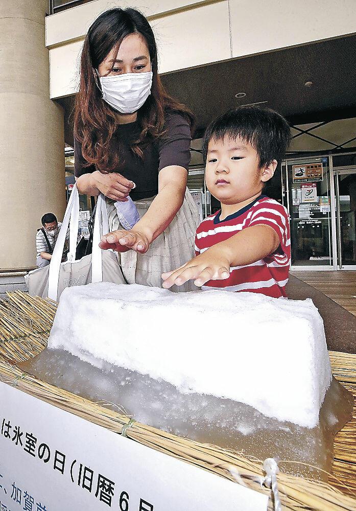 雪氷に手をかざす来場者=近江町市場