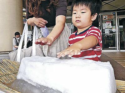 触れないけど涼しい 近江町市場に氷