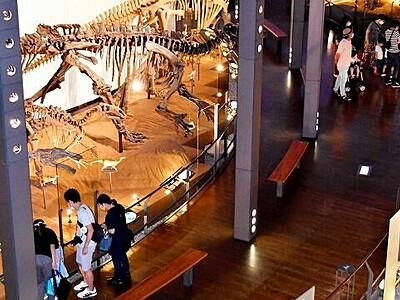 恐竜博物館入館、例年の半分 土日曜、平日は2割