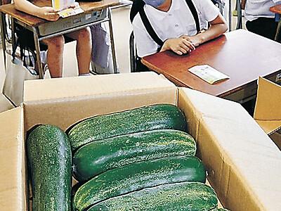 加賀野菜、家庭で食べて 金沢市とJA金沢市が企画