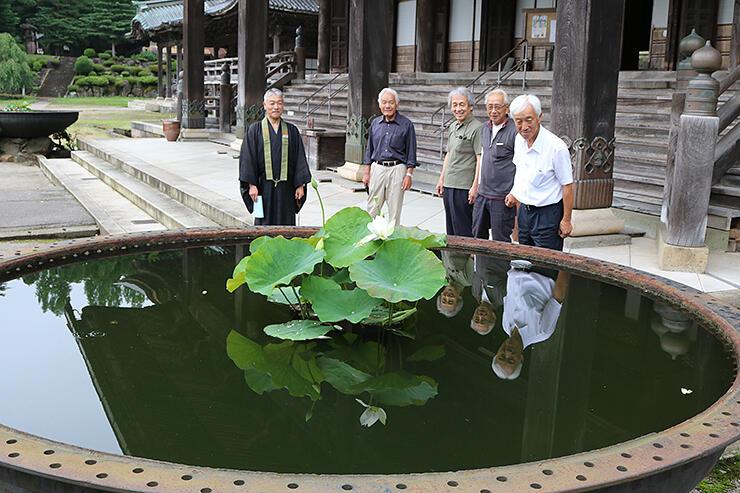 天水鉢に浮かぶハスの花を眺める住民有志=瑞泉寺