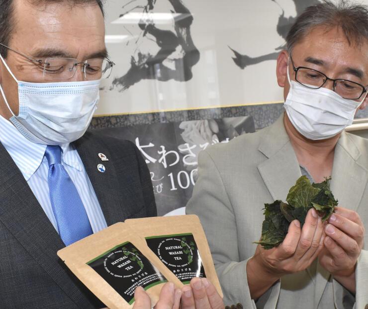 ティーバッグ5袋入りの「本わさび茶」と乾燥させたワサビの葉