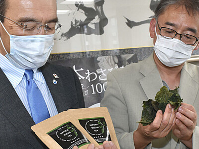 ワサビの葉、うま味多い「茶」に 松本大と県内企業