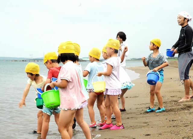 海開きとなった浜からハマグリをまく園児=7月10日、福井県福井市の鷹巣海水浴場