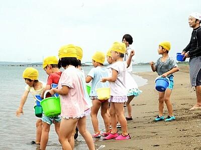 福井市の鷹巣、鮎川両海水浴場で海開き 園児ハマグリまき笑顔