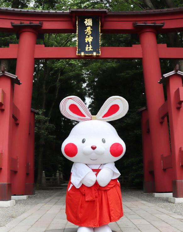 投票で名前が決まった弥彦村のキャラクター「ミコぴょん」