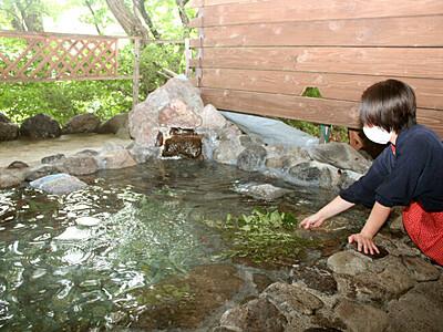 薬草風呂でいい湯だな 阿賀町・宿泊施設「小会瀬」