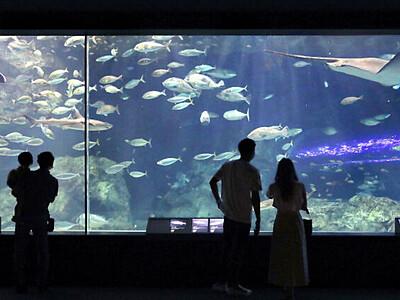愛されて30周年 新潟市水族館「マリンピア日本海」