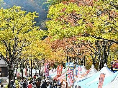 恒例の「九頭竜紅葉まつり」中止 福井県大野市