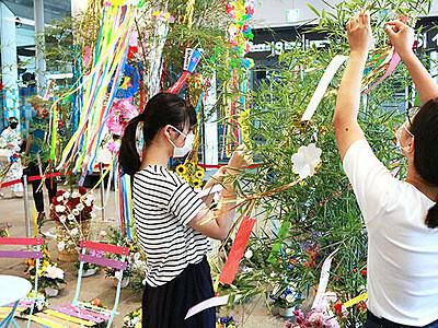 花オブジェで心癒やして 富山駅南北自由通路