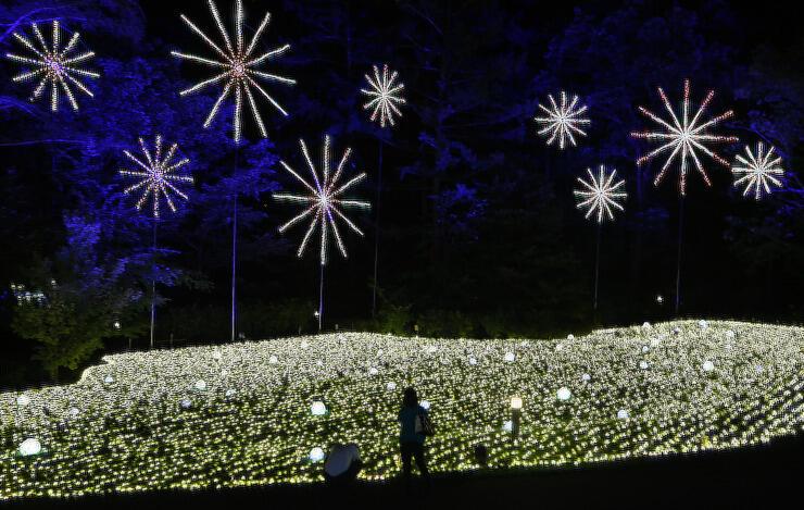 「日本の夏」をテーマにしたイルミネーション。 花火の形の装飾も登場した=7日午後7時59分、大町市の国営アルプスあづみの公園大町・松川地区