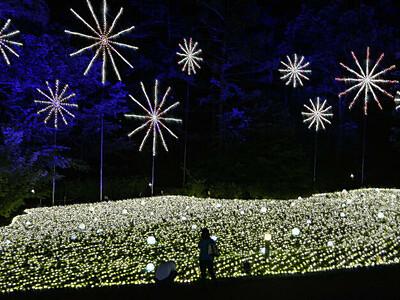 50万の光で夏を演出 アルプスあづみの公園大町・松川地区