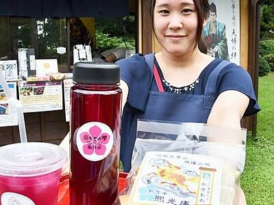 「明智光秀」印の赤ちそジュース好評 坂井市の称念寺で販売 地元原料を使用