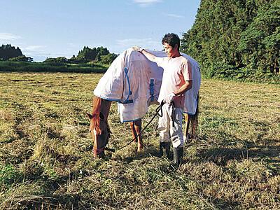 珠洲の農園 引退競走馬のセラピーへ始動
