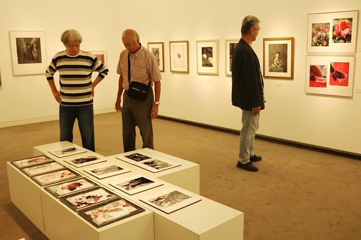昨年10月に開かれたアートペーパー展=砺波市美術館